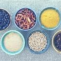 Spezie ed Erbe e Piante aromatiche