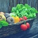 patè di Verdure, Ortaggi e Legumi