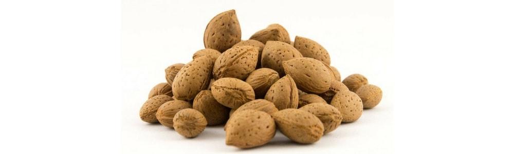 mandorla di toritto almond from toritto copertina-min