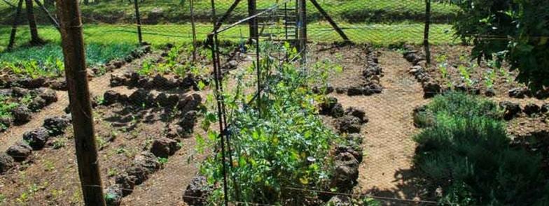 aridocultura e territorio uno spunto per la gestione responsabile dell'acqua - aridoculture and territory a cue for responsible water management 1