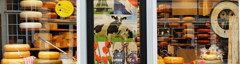 #info formaggio e storia cheese and history - copertina x articolo-min