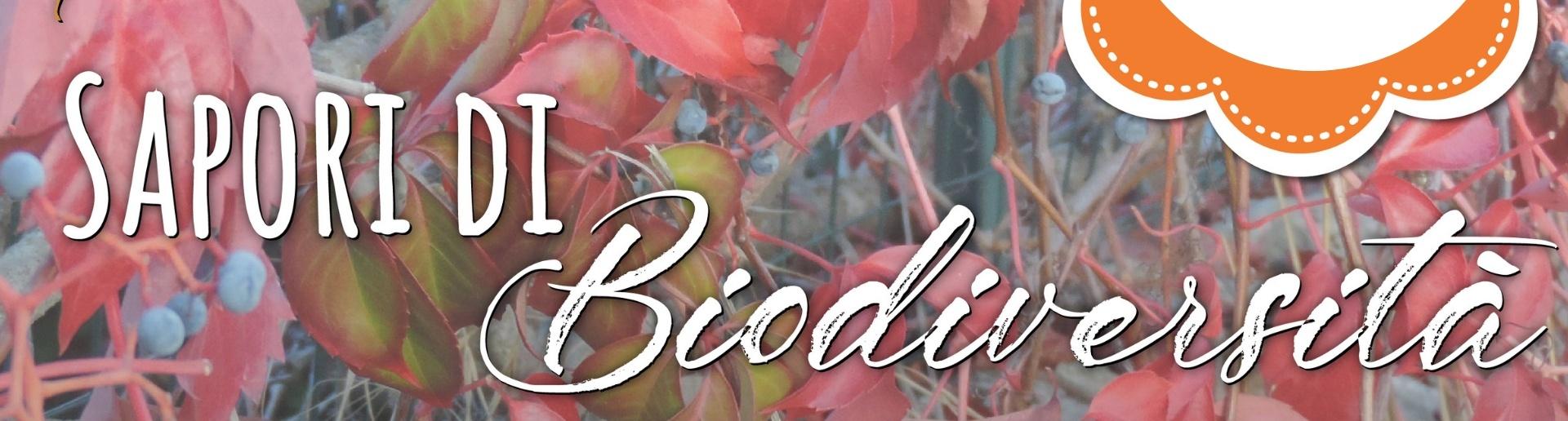 Biodiversitá, arti e mestieri in mostra a Ceglie Messapica (Brindisi, Puglia). Il 27 e 28 Ottobre presso la Bottega di ISA.